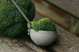 brocoli et louche
